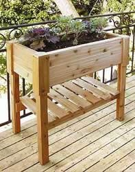 raised cedar planter box